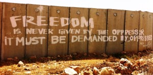 freedom-is-never-given-by-the-oppressor